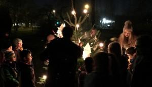 Die Wölflinge schmücken den Weihnachtsbaum
